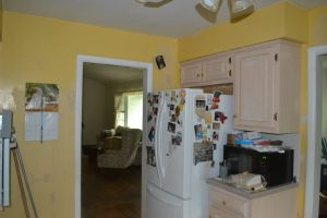 Before Kitchen Painting