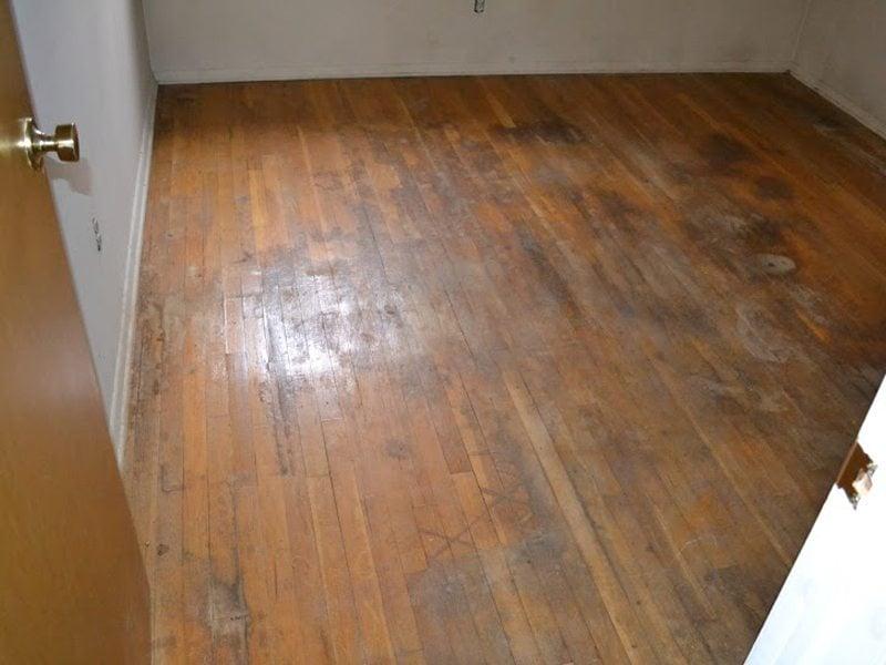 Before Refinishing Water Damaged Hardwood Floors