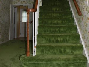 Goodbye Green Shag Carpet and Floral Wallpaper