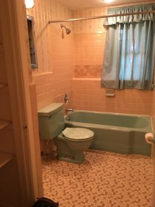 Pink and Blue Bathroom With Water Damage and an Inconvenient Toilet Paper Holder
