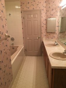 Vanity with Angled Corner Top, Mauve Sinks, Door and Tub