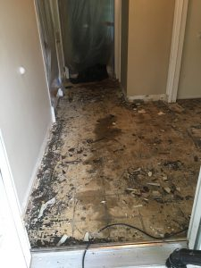 Removed old linoleum