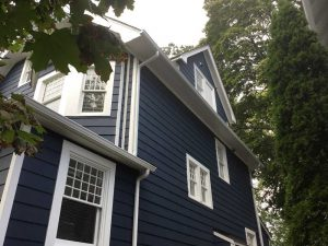 Windows and exterior painting