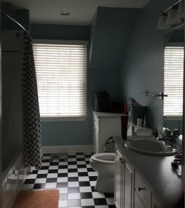 Existing Hallway Bathroom