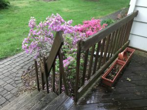 Damaged Railing